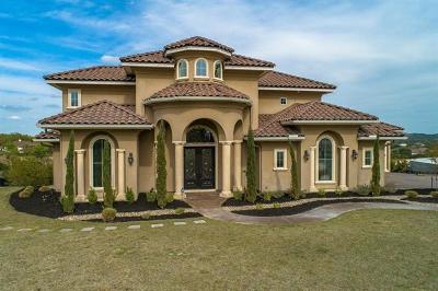 Spicewood Single Family Home For Sale: 4901 Evidence Cv