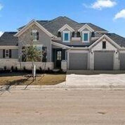 Austin Single Family Home For Sale: 437 Stone River Dr