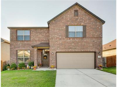 Kyle Single Family Home For Sale: 150 Matthews Ln