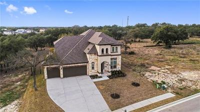 Cedar Park Single Family Home For Sale: 1005 Valley View Dr