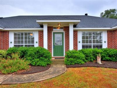 Lago Vista Single Family Home For Sale: 20905 Little Ln