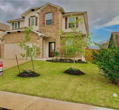 Pflugerville Single Family Home For Sale: 3605 Brean Down Rd