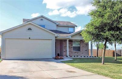 Kyle Single Family Home For Sale: 104 Ames Cv