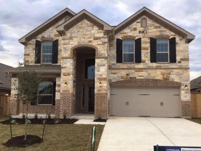 Round Rock Single Family Home For Sale: 1301 Chad Dr