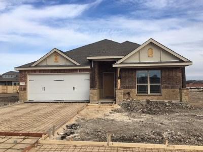 Single Family Home For Sale: 3348 Lauren Nicole Dr