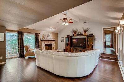 Travis County, Williamson County Single Family Home For Sale: 8807 Mountain Ridge Dr