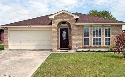 Lockhart Single Family Home For Sale: 1517 Gunnison Cv