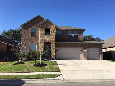 Leander Single Family Home For Sale: 4229 Trinity Woods St