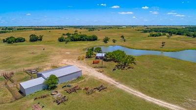 Burnet County, Lampasas County, Bell County, Williamson County, llano, Blanco County, Mills County, Hamilton County, San Saba County, Coryell County Farm For Sale: 1100 County Road 465
