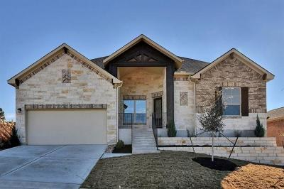 Dripping Springs Single Family Home For Sale: 185 Wynnpage Dr