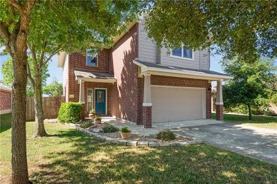 Hays County, Travis County, Williamson County Single Family Home For Sale: 1617 Pavelich Pass