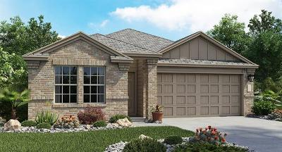 Hays County, Travis County, Williamson County Single Family Home For Sale: 15413 Winter Ray Drive