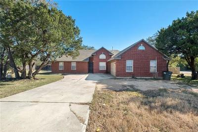 Leander Single Family Home For Sale: 1916 Ireland Dr