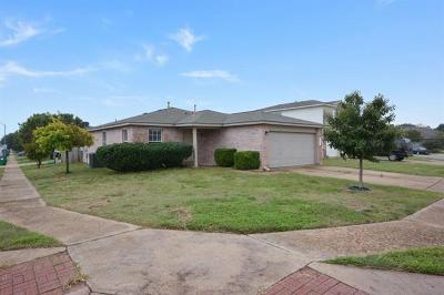 Pflugerville Single Family Home For Sale: 17519 Wiseman Dr
