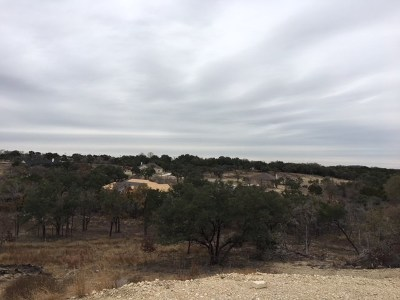 Williamson County Residential Lots & Land For Sale: 133 Taylor Creek Way