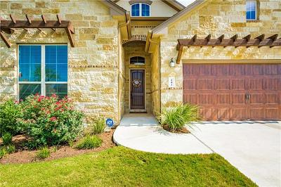 Dripping Springs Single Family Home For Sale: 241 Quartz Dr