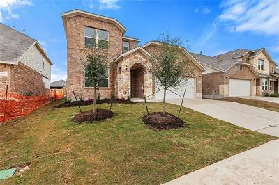Pflugerville Single Family Home For Sale: 17012 Borromeo Ave