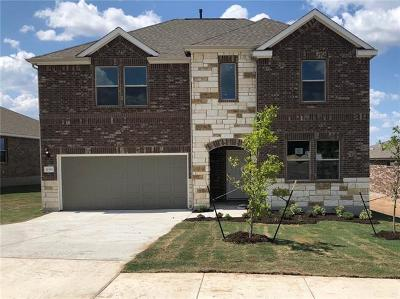 Hays County, Travis County, Williamson County Single Family Home For Sale: 11501 River Plantation Dr