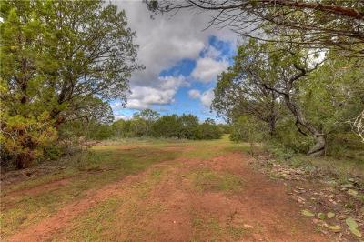 Burnet TX Residential Lots & Land For Sale: $250,000