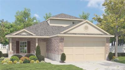 Hays County, Travis County, Williamson County Single Family Home For Sale: 6720 Branrust Dr