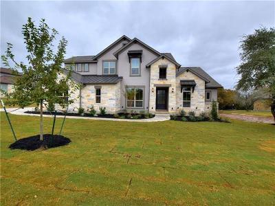 Liberty Hill Single Family Home For Sale: 113 Cerro Picacho Trl