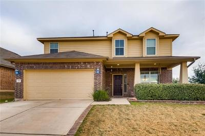 Buda, Kyle Single Family Home For Sale: 191 Lone Tree Holw
