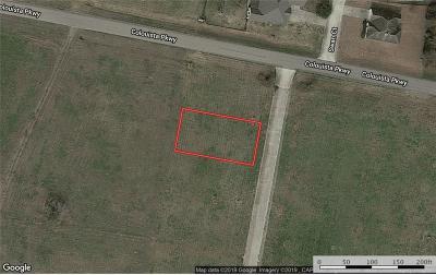 Bastrop County Residential Lots & Land For Sale: 102 Sandpiper Dr
