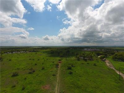 Lockhart Residential Lots & Land For Sale: 3203 Homanville Trl
