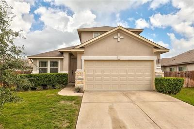 Pflugerville Single Family Home For Sale: 17213 Bridgefarmer Blvd