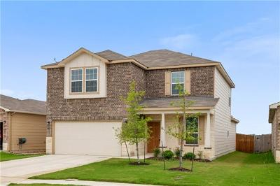 New Braunfels Single Family Home For Sale: 122 Texas Thistle
