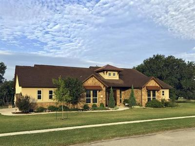Liberty Hill Single Family Home For Sale: 203 Rio Ancho Blvd