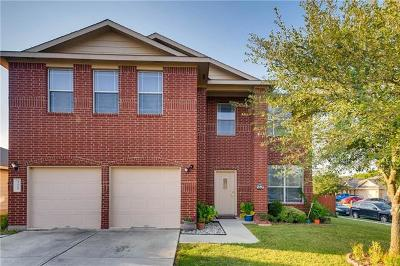 Buda Single Family Home For Sale: 325 Firebush Way