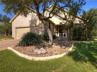 Single Family Home For Sale: 163 Dan Moody Trl