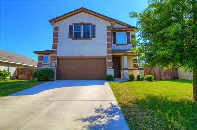 Pflugerville Single Family Home For Sale: 17340 Bridgefarmer Blvd