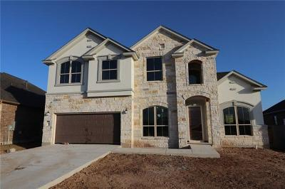 Dripping Springs TX Single Family Home For Sale: $405,868