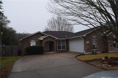 Smithville Single Family Home For Sale: 506 Lueders Ln