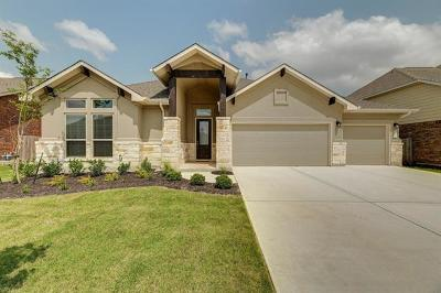 Pflugerville Single Family Home For Sale: 19917 Kite Wing Ter