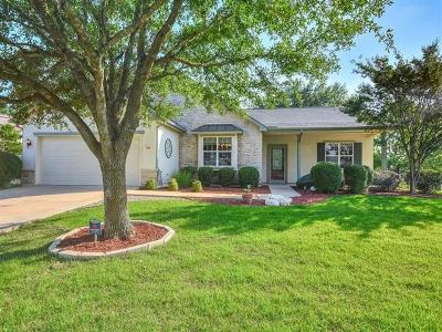 Georgetown Single Family Home For Sale: 724 Texas Dr