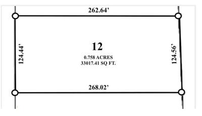 Cedar Creek Residential Lots & Land For Sale: Lot 12 Little Loop