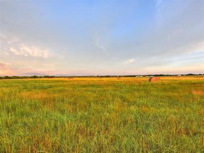 Farm For Sale: County Road 460 (Lot 5&6)