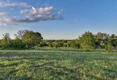 Bell County, Burnet County, Coryell County, Lampasas County, Mills County, Williamson County, San Saba County, Llano County Residential Lots & Land For Sale: Lot 46 Fm 963