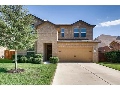 Georgetown Single Family Home For Sale: 113 Inks Lake Dr