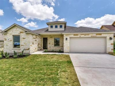 Williamson County Single Family Home Active Contingent: 200 Magan Ln