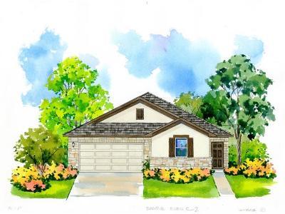 San Marcos Single Family Home For Sale: 241 Braeden Brooke Dr