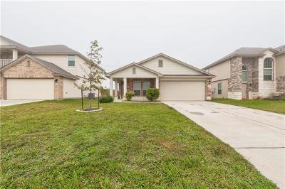 Williamson County Single Family Home For Sale: 245 Biles Ln