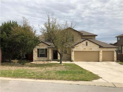Dripping Springs Single Family Home For Sale: 9817 Stratus Dr