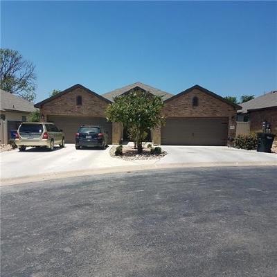 New Braunfels Multi Family Home For Sale: 1087 Carolyn Cv
