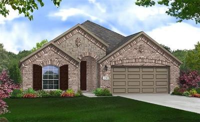 Hutto Single Family Home For Sale: 312 Clearlake Dr