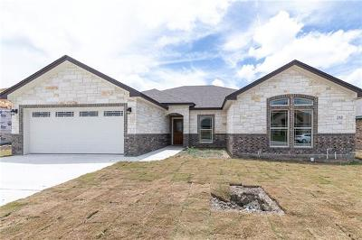 Williamson County Single Family Home For Sale: 213 Don Dr