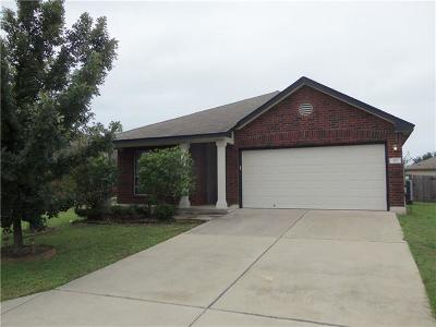 Hutto Single Family Home For Sale: 317 Riverwalk Dr
